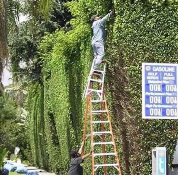 Construction Worker Mega Fails (38)