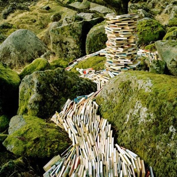 Rune Guneriussen's Quirky Installations in Nature (6)